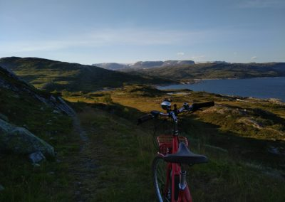 Landschaft in Norwegen mit Diamant Juna Retro E Bike